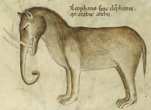 Elephant from a herbal (Italy, c.1440) British Library