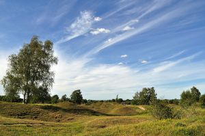 Barnack Hills & Holes National Nature Reserve (Dave Crosby)