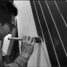 1964 photo of Frank Stella by Ugo Mulas (Wikipedia)